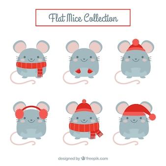 Collezione di topi piatti con diverse pose