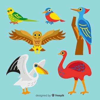 Collezione di uccelli disegnati a mano carino
