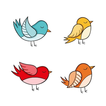 Collezione di uccelli disegnati a mano