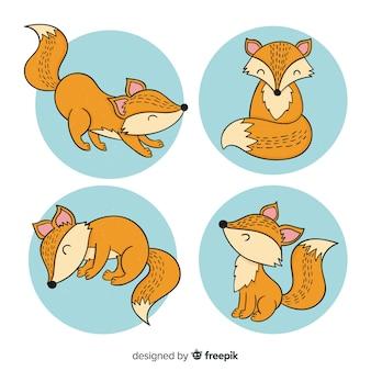 Collezione di volpe disegnata a mano carina