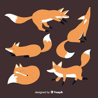 Collezione di volpe selvatica disegnata a mano