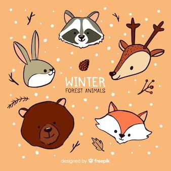 Collezione di volti di animali della foresta invernale