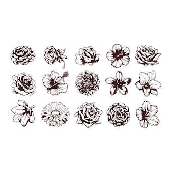 Collezione disegnata a mano fiori