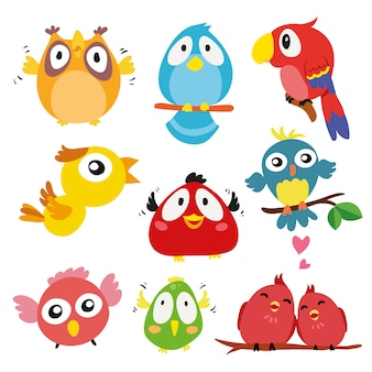 Collezione disegnata a mano uccelli