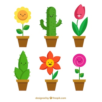 Collezione fioriere divertenti