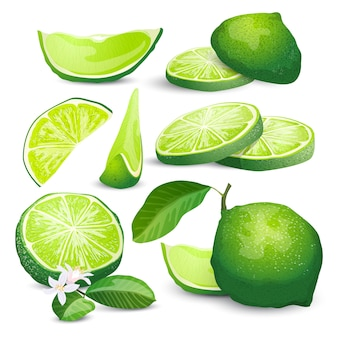 Collezione lime