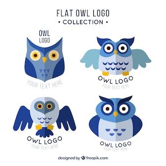 Collezione logo creativo gufo blu