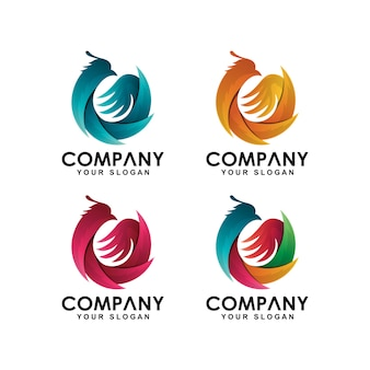 Collezione logo uccello phoenix