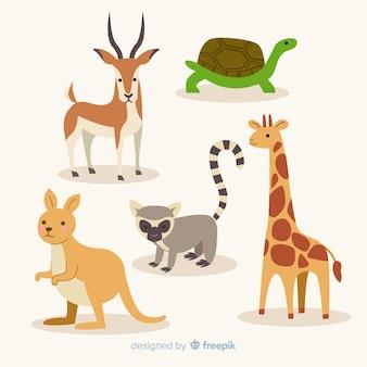 Collezione piatta di animali esotici