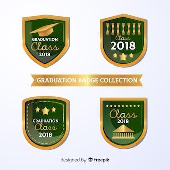 Collezione verde di badge di laurea