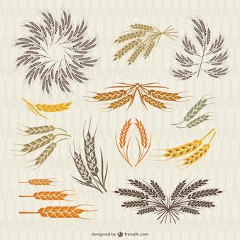 Collezione vintage di corona e spighe di grano