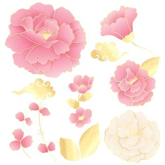 Collezioni di fiori di peonia, dorati e rosa.