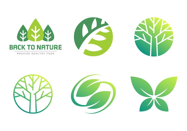 Collezioni nature symbol leaf leaf