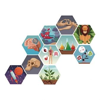 Colori le figure astratte geometriche con evoluzione del mondo delle icone
