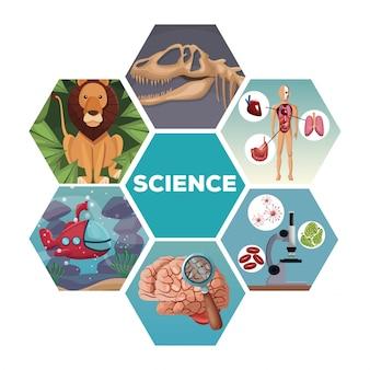 Colori le figure astratte geometriche con l'evoluzione delle scienze del mondo delle icone