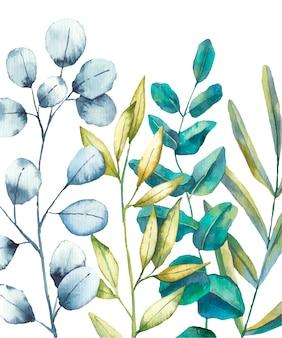 Composizione con foglie e rami illustrazione ad acquerello