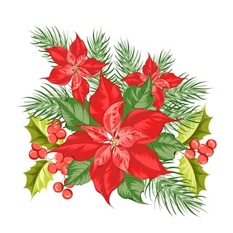 Composizione del fiore rosso del poinsettia isolato sopra priorità bassa bianca.