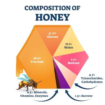 Composizione del miele d'api. schema della struttura del cibo etichettato. grafico percentuale educativo con glucosio organico, fruttosio, acqua e maltosio come contenuto nutritivo principale per le api fresche.