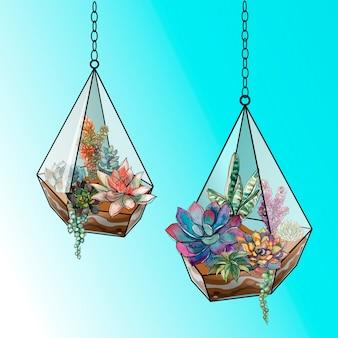 Composizione floreale di piante grasse in un acquario di vetro geometrico