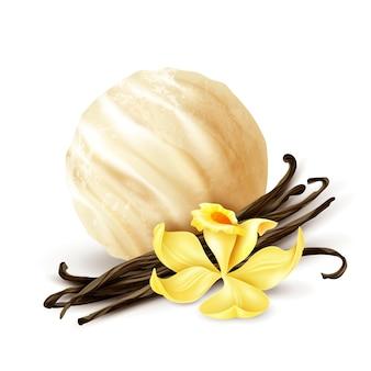 Composizione realistica nel primo piano della paletta del gelato alla vaniglia con i fagioli secchi aromatici e il fiore giallo fresco