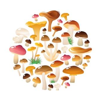 Composizione rotonda dei funghi della foresta