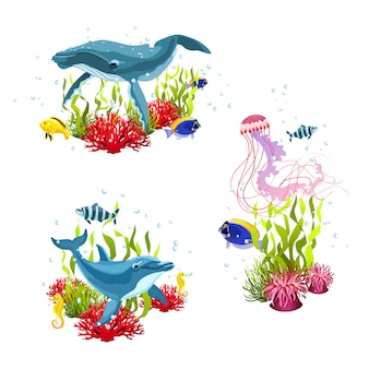 Composizioni di vita marina