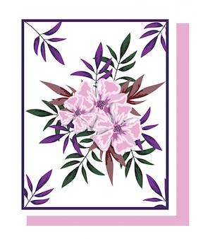 Composizioni floreali di fiori per il disegno ad acquerello di auguri