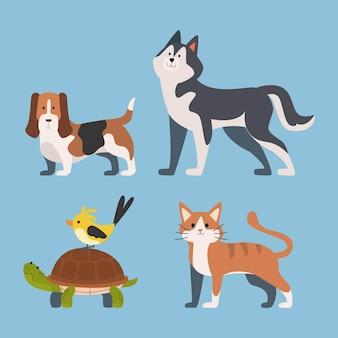 Concetto carino diversi animali domestici