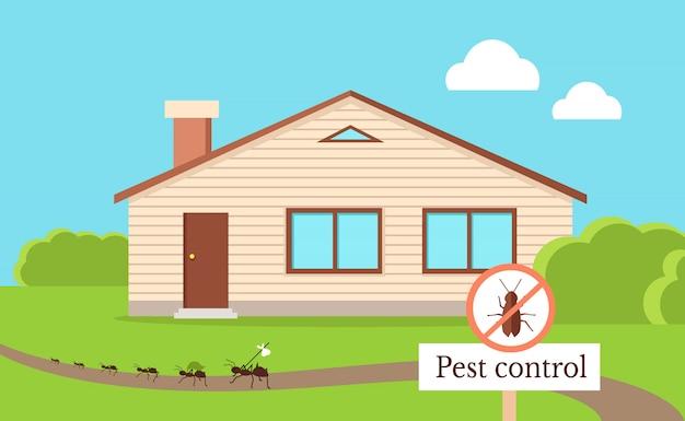 Concetto di controllo dei parassiti con scarafaggio che lascia casa