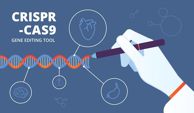 Concetto di crispr. sfondo medico di modifica del genoma umano