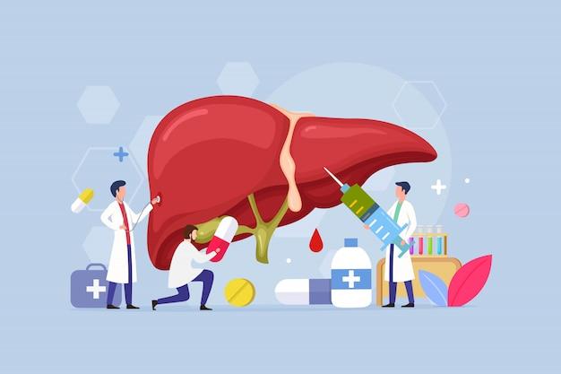Concetto di design del trattamento delle malattie del fegato con persone minuscole