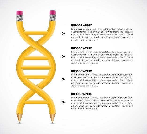 Concetto di design di infografica matita dna.