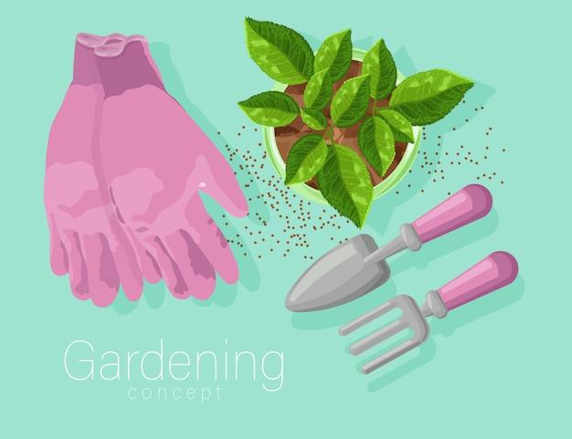 Concetto di giardinaggio con guanti rosa, pala e rastrello. foglie di tè che crescono in una pentola