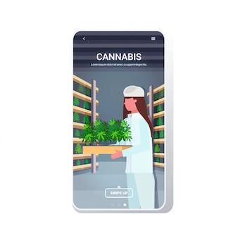 Concetto di marijuana consumo di droga agroalimentare telefono app mobile schermo