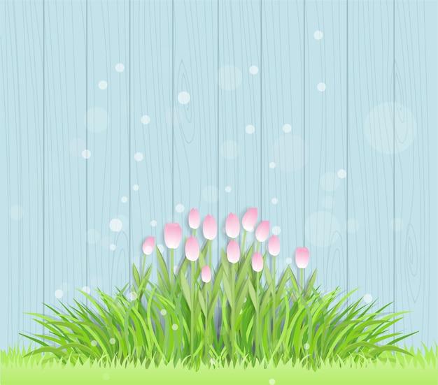 Concetto di pasqua con i tulipani e l'erba su una parete di legno blu