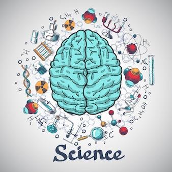 Concetto di scienza di schizzo del cervello