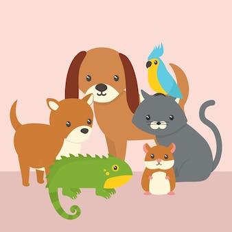 Concetto di simpatici animali domestici diversi