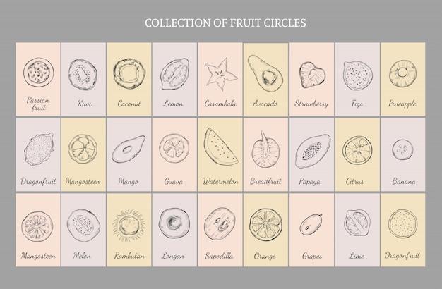 Concetto di tabella di frutta sana disegnata a mano
