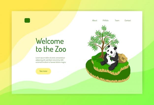 Concetto isometrico dello zoo della pagina web con il panda durante il cibo vicino all'albero su colore