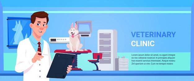 Concetto veterinario di cura degli animali e della medicina dell'ufficio della clinica veterinaria del dottore examining dog in