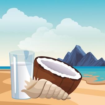 Conchiglia di acqua di cocco
