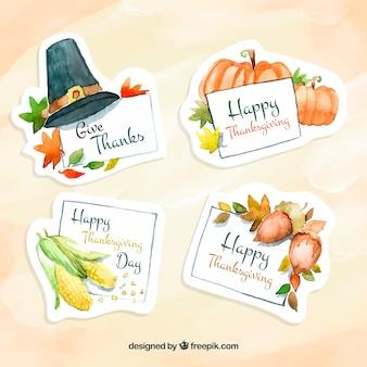 Confezione di adesivi in acquerello per il ringraziamento