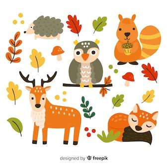 Confezione di animali della foresta disegnati a mano