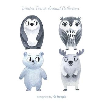 Confezione di animali della foresta invernale disegnata a mano
