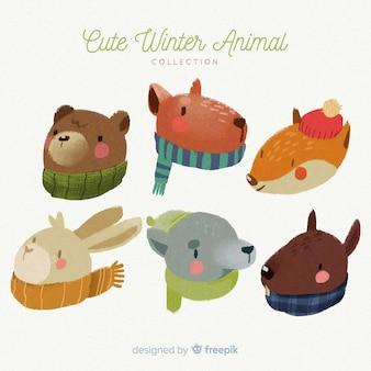Confezione di animali invernali con sciarpe