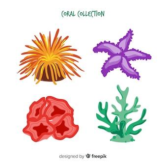 Confezione di corallo colorato disegnato a mano