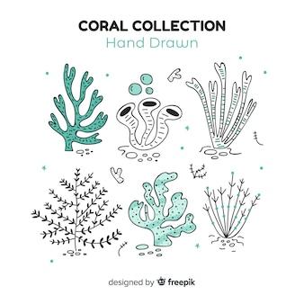 Confezione di corallo disegnata a mano