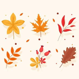 Confezione di diverse foglie autunnali