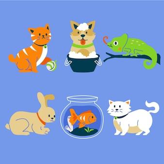 Confezione di diversi animali domestici