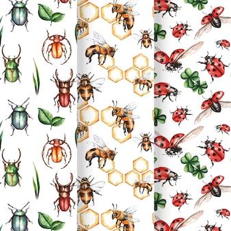 Confezione di diversi schemi di bug